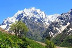 Montagne di Caucaso Dombai Fotografia Stock Libera da Diritti