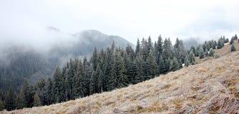 Montagne di Ciucas su una mattina nebbiosa Immagine Stock