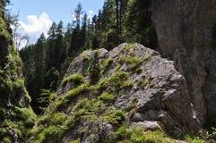 Montagne di Dachstein, Silberkarklamm, Austria Fotografie Stock Libere da Diritti