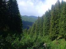 Montagne di Dolomity Immagini Stock Libere da Diritti