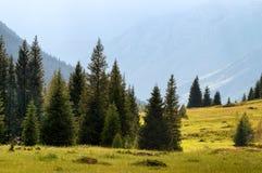 Montagne di Dzungarian Alatau, il Kazakistan Fotografia Stock Libera da Diritti