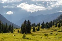 Montagne di Dzungarian Alatau, il Kazakistan Fotografie Stock Libere da Diritti