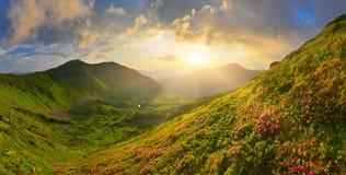 In montagne di estate Immagine Stock Libera da Diritti