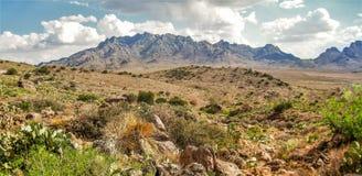 Montagne di Florida vicino a Deming, New Mexico fotografie stock
