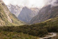 Montagne di Forrest in Nuova Zelanda fotografie stock