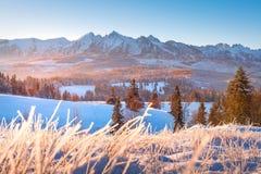 Montagne di inverno alla luce solare di mattina immagini stock