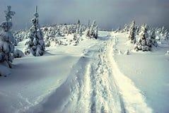 Montagne di inverno con il sentiero per pedoni Fotografie Stock