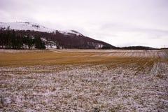 Montagne di inverno di Snowy con i cieli nuvolosi e terra dell'azienda agricola nella priorità alta Fotografie Stock Libere da Diritti