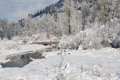 Montagne di inverno, Montana Immagine Stock Libera da Diritti