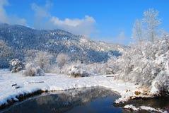 Montagne di inverno, Montana Immagine Stock