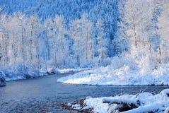 Montagne di inverno, Montana Immagini Stock Libere da Diritti