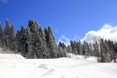 Montagne di inverno, stazione sciistica Rosa Khutor Fotografie Stock