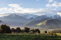 Montagne di Kaikoura Immagini Stock Libere da Diritti