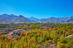 Montagne di Karkas, Iran fotografia stock