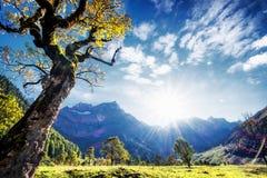 Montagne di Karwendel Immagine Stock Libera da Diritti