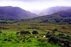 Montagne di Kerry Immagini Stock Libere da Diritti