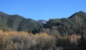 Montagne di Lion Canyon Immagine Stock Libera da Diritti