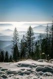 Montagne di mistero nell'inverno Fotografia Stock