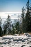 Montagne di mistero nella vista di destra di inverno Fotografia Stock Libera da Diritti