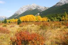 montagne di paesaggio di autunno immagini stock libere da diritti