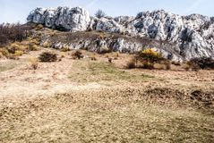 Montagne di Palava della primavera con il prato, le angiosperme, le rocce ed il chiaro cielo in repubblica Ceca Fotografia Stock