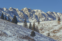 Montagne di Piatra Craiului, Romania Fotografia Stock