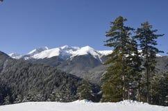 Montagne di Pirin nella stazione sciistica Bansko bulgaria Fotografia Stock