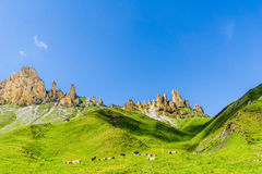 Montagne di Rosszaehne dall'alpe di Seiser nel Tirolo del sud Fotografia Stock