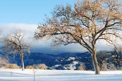 Montagne di Sandia con neve Immagini Stock Libere da Diritti