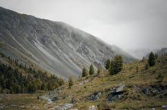 Montagne di Sayan Fotografie Stock Libere da Diritti