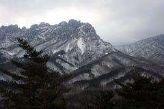 Montagne di Seoraksan IL SUD COREA Fotografia Stock Libera da Diritti