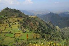 Montagne di Simien del paesaggio - Etiopia Immagini Stock Libere da Diritti