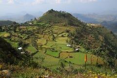 Montagne di Simien del paesaggio - Etiopia Fotografia Stock Libera da Diritti