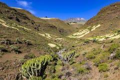 Montagne di Simien, Etiopia Fotografie Stock Libere da Diritti