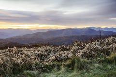 Montagne di Smokey Fotografia Stock Libera da Diritti