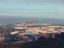 Montagne di Snowy con le foreste verdi fotografie stock libere da diritti