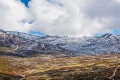 Montagne di Snowy coperte nel paesaggio della neve Alpi australiane, Moun Fotografia Stock Libera da Diritti