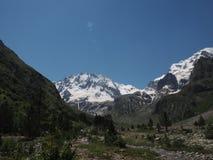 Montagne di Snowy e valle verde, canyon Fotografia Stock