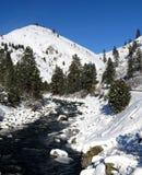 Montagne di Snowy IV Fotografie Stock