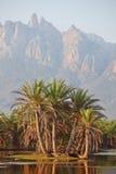 Montagne di Socotra immagini stock
