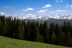 Montagne di Tatry, Polonia Immagini Stock