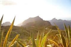 Montagne di Teno fotografie stock