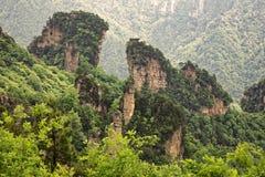 Montagne di Tianzi, Zhangjiajie Forest Park nazionale, Hunan Provin Fotografia Stock