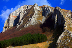 Montagne di Trascau Immagine Stock