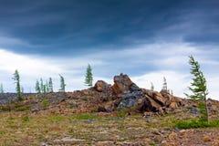 Montagne di Ural polari Fotografia Stock Libera da Diritti