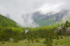 Montagne di Valbona in Albania Fotografia Stock