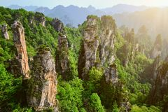 Montagne di Zhangjiajie, Cina fotografia stock libera da diritti
