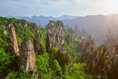 Montagne di Zhangjiajie, Cina fotografie stock