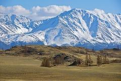 Montagne dorate di Altai Fotografie Stock Libere da Diritti
