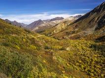 Montagne du Yukon-Meckenzie Images libres de droits